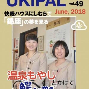 ukipal_49